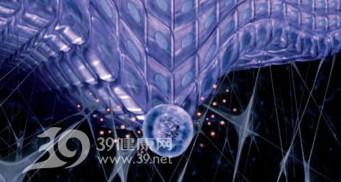 干細胞護膚 高科技填平皺紋