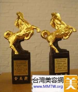 台灣電影金馬獎